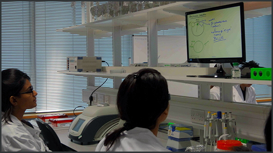 Students working at their lab bench, with one of the 'slave' screens visible broadcasting what is on the main smartboard