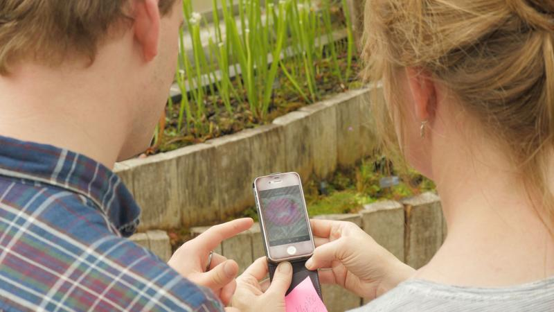 two students exploring plants on their phone inside a botanical garden